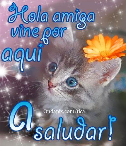Image Gallery hola amiga