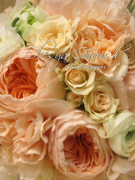 Букет невесты с пионовидными розами Дэвида Остина (David Austin Roses), ранункулусами и гвоздикой.