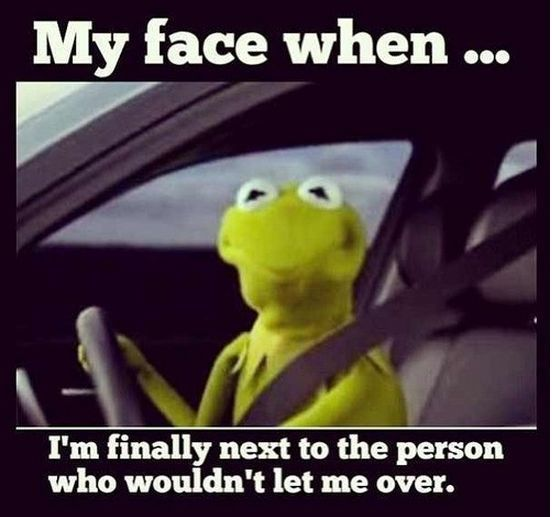 """My face when..."" Click to see more hilarious driving memes! #lol #kermit"