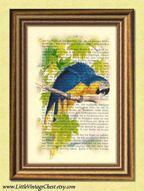 Black Friday! Buy 1 Get 2! - BLUE PARROT   Parakeet  Dictionary art print by littlevintagechest, $7.99
