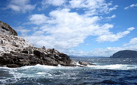 Lonely Planet have shortlisted 9 places in Tasmania to discover. Oh the places you'll go...