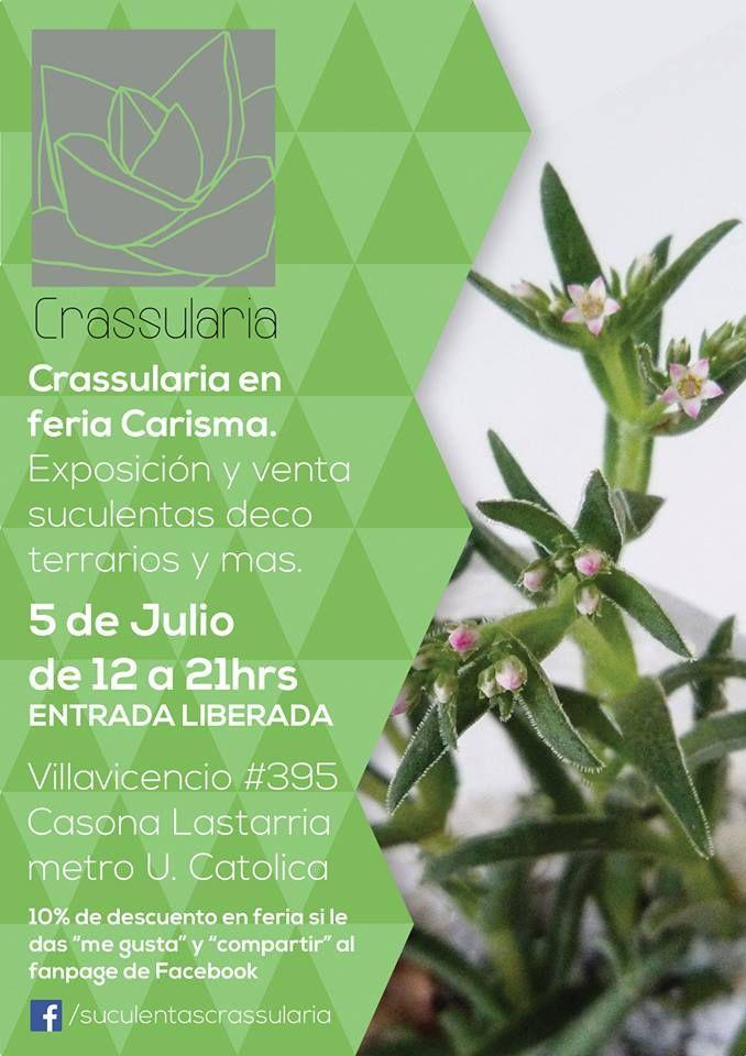 www.facebook.com/suculentascrassularia