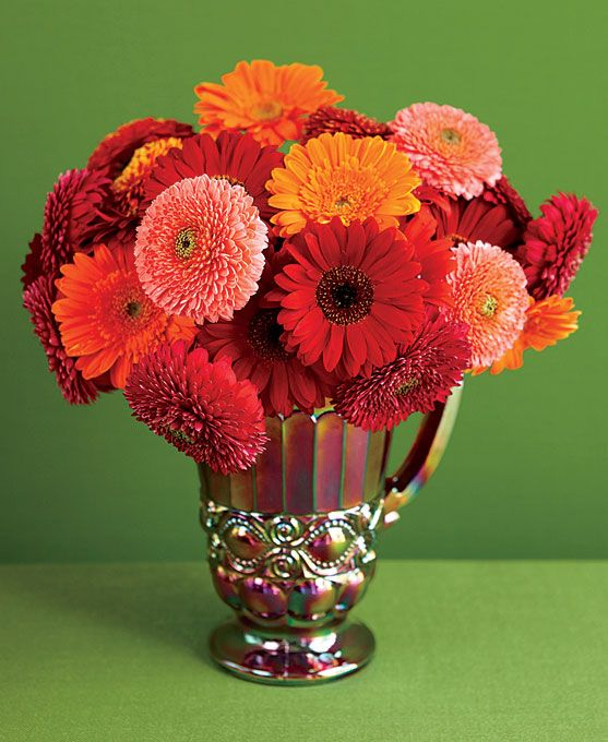 Ideas about gerbera daisy centerpiece on pinterest