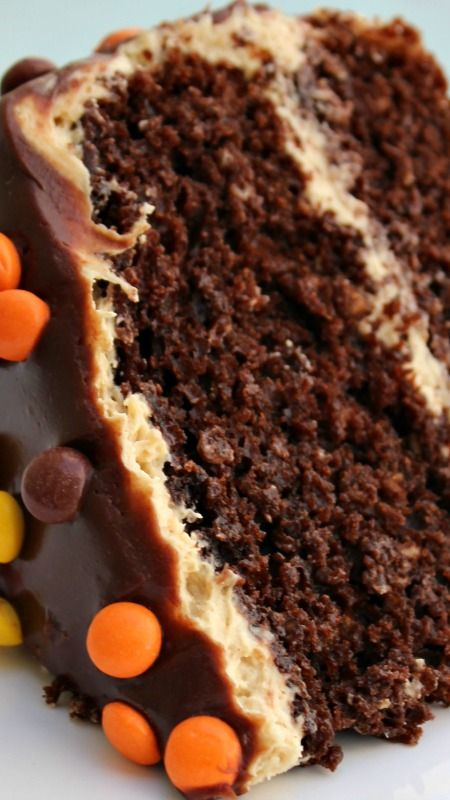 Double Chocolate Peanut Butter Cake ~ It is the ultimate peanut butter chocolate…