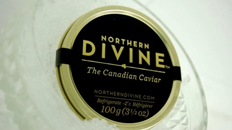 Canadian Caviar made in Sechelt, Sunshine Coast BC