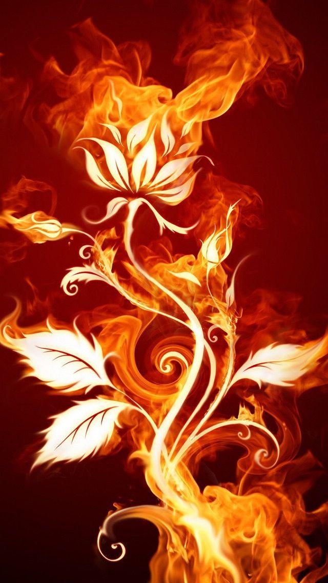17 Best Images About Phoenix On Pinterest