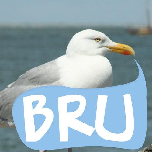 Bruinisse, afgekort als BRU