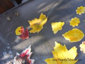 Salt dough, Leaves and Salts on Pinterest