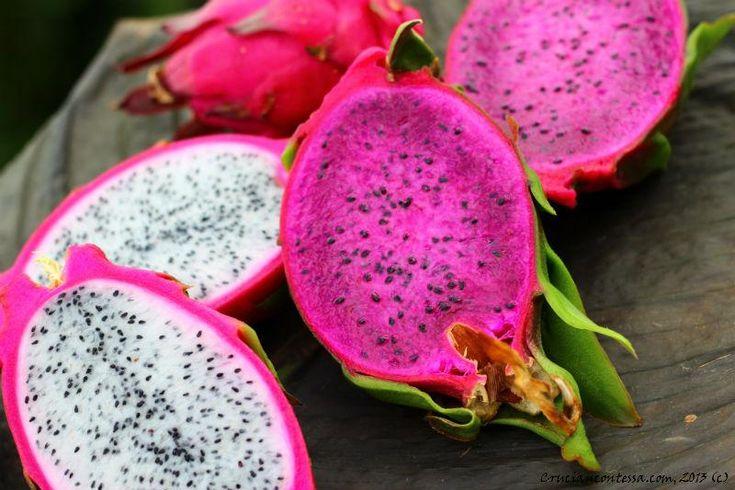 Mersin'de ilk olarak tropikal meyve yetiştiriciliği yapan Mehmet Tanrıverdi tarafından 12 yıllık çalışmanın üzerine yetiştirilmeye başlanan tropik meyve mahalle halkının beğenisine sunuldu.