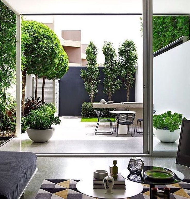 Fabulous small garden idea | mature planting used to create structure and perspective
