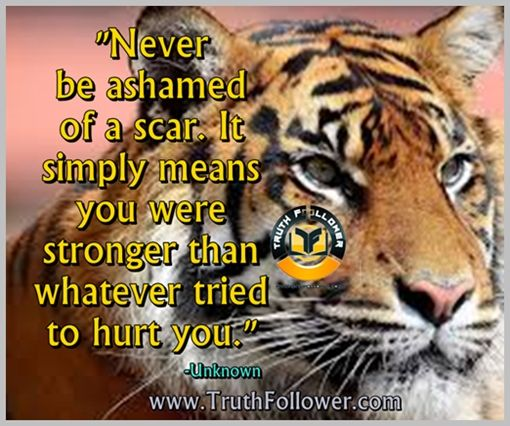 be alone oh chriatmas quotes | Never be ashamed of a scar. It simply means you were stronger than ...
