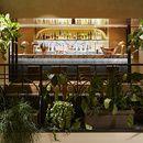 10 bars et restaurants tropicaux autour du monde  Alcazar, Paris   62, Rue Mazarine, 75006, www.alcazar.fr