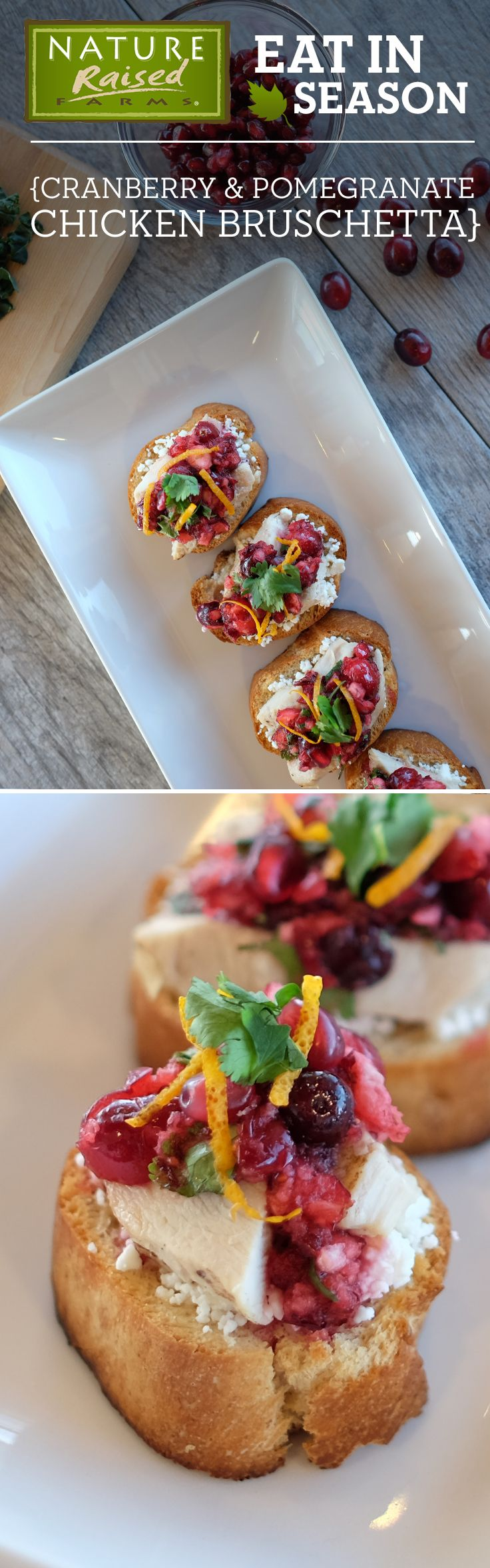 This Cranberry & Pomegranate Chicken Crostini appetizer is as beautiful as it is delicious! | NatureRaised Farms®