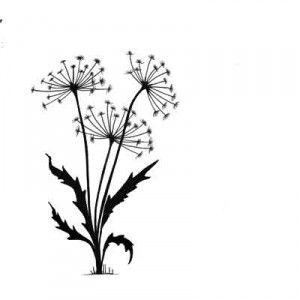 Lavinia Clear Stamps - Dandelions 2