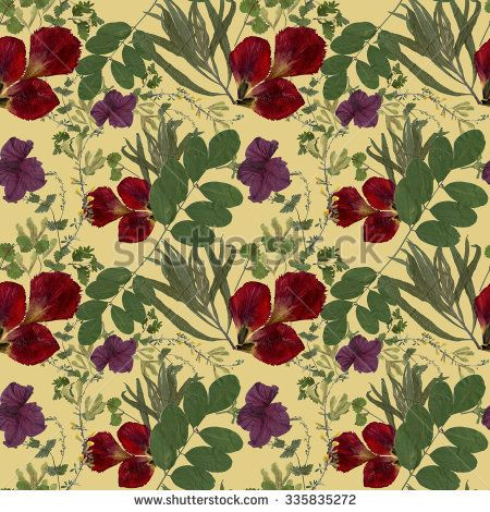 Dry herbarium plants seamless pattern on yellow background with flowers and leaves