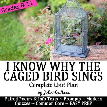 I Know Why The Caged Bird Sings Questions