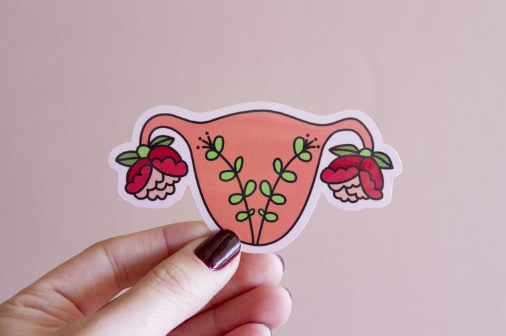 Feminist Uterus Sticker Blooming Uterus- Illustrated Women's Rights Reproductive Rights Weatherproof Decal Bumper Sticker by LittleWomanGoods on Etsy