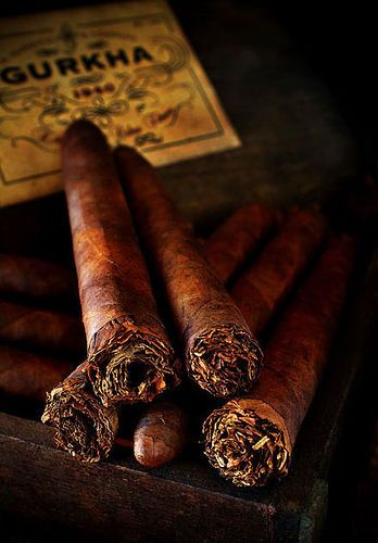 Gurkha Shaggy cigars   these look so old school. Id feel like mark twain.