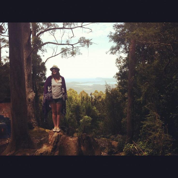 Nature in Tasmania.