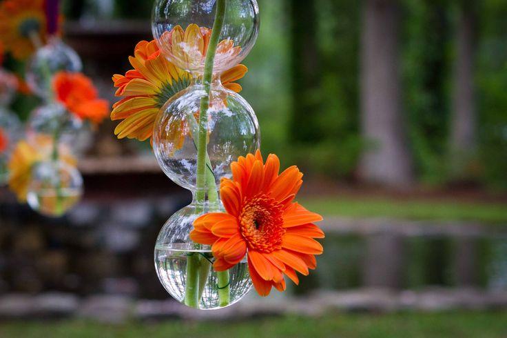 Outdoor ceremony ideas-CB2 Glass Balls Orange Gerber daisies