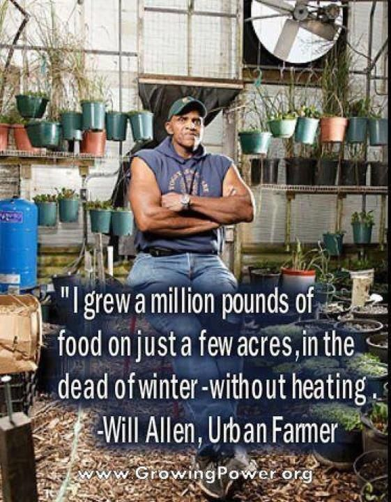Urban Farming: Man Grows A Million Pounds Of Food On A Few Acres In The Dead Of Winter With No Heating