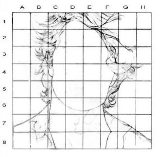 Portrait Drawing for the Ultimate Beginner: The Grid Method