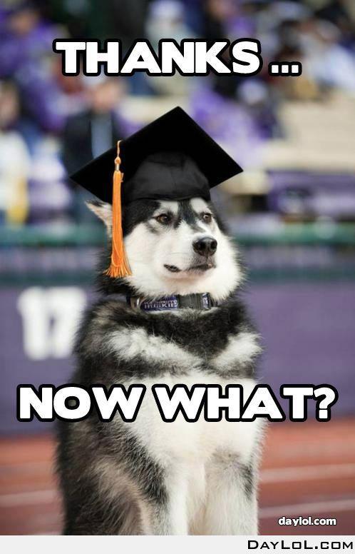 15 best images about Grad Humor on Pinterest | Graduation meme ...