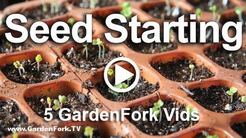 5 Great Seed Starting How To Videos. we talk about DIY cardboard and paper seed starting pots, and how to start seeds, and make a cheap grow light.
