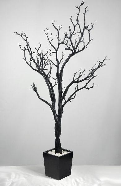 Best 25 Manzanita Tree Ideas On Pinterest Manzanita Centerpiece Manzanita And Manzanita Tree
