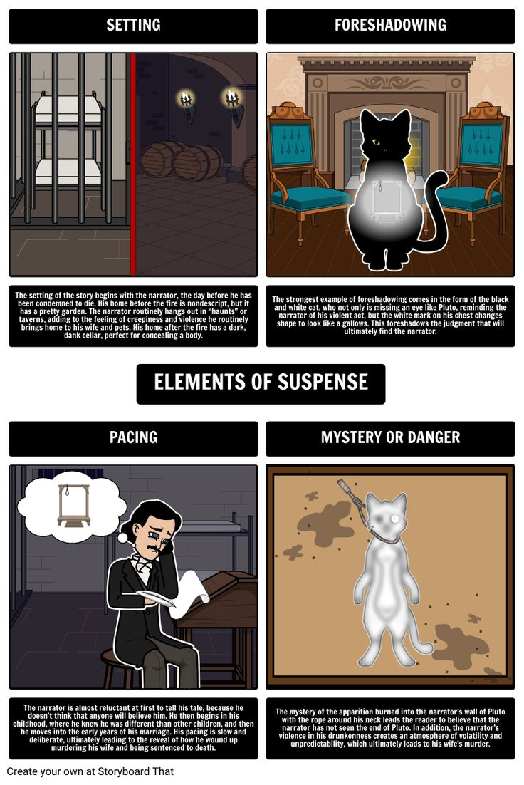 analysis of edgar allan poes black Poe's short stories by edgar allan poe buy study  poe's short stories  summary and analysis of the black cat  in their household they have a  number of animals, including a large and beautiful black cat named pluto.