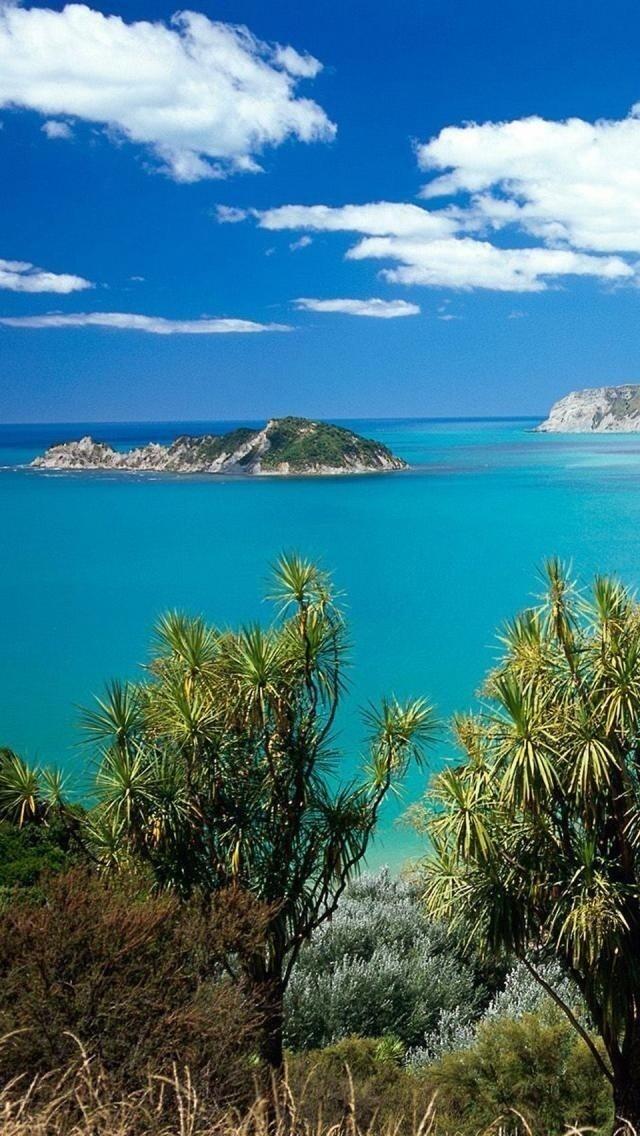 211 Best Places New Zealand Images On Pinterest New Zealand Auckland New Zealand And