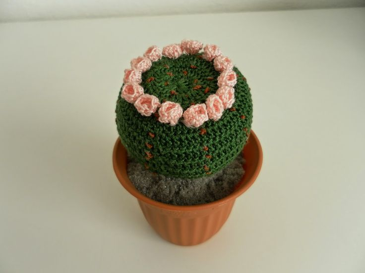 17 best images about crochet cactus on pinterest free for Il blog di sam piante grasse