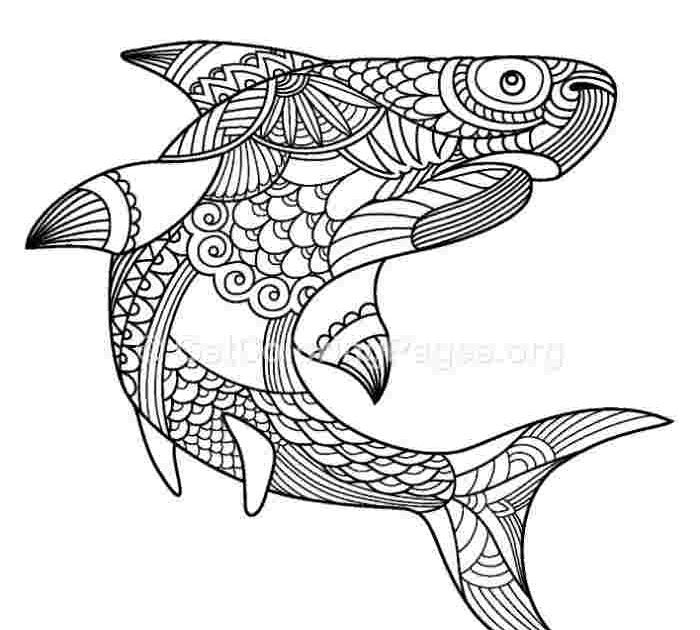 Cute and Fun Dolphin Coloring Pages | 101 Coloring | 630x700