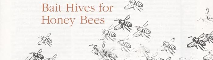 Bait Hives For Honeybees- size of entrance, positioning, odours, timing, pros & cons