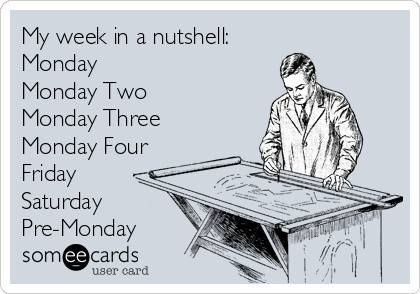 Funny ecard - My week in a nutshell | Funny Pictures, Funny jokes and so much more | Jokideo