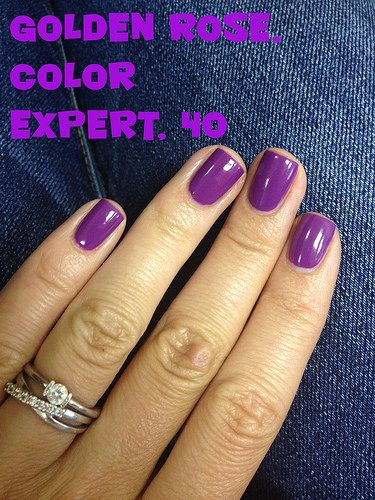Golden Rose Color Expert 40