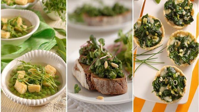 Chutné recepty, ktoré pre vás pripravujeme v redakcii časopisu ZDRAVIE sú výlučne zo zdravých surovín.