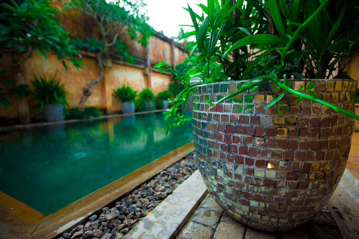 Rustic accessories offset the lush greenery surrounding the pool area.