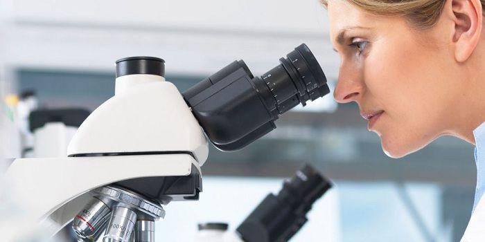 Global Microscopy Market 2017 - Leica Microsystems, Carl Zeiss AG, Nikon Corporation, FEI Company, Olympus Corporation - https://techannouncer.com/global-microscopy-market-2017-leica-microsystems-carl-zeiss-ag-nikon-corporation-fei-company-olympus-corporation/