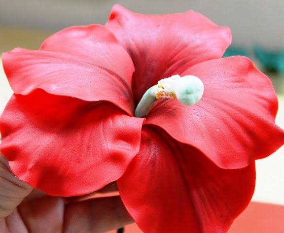 Viorica tortas de flor de hibisco, paso a paso