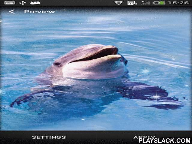 Dolphin  Android App - playslack.com , Dolphin - incredible live wallpapers give you a possibility to watch coltish dolphins. The app offers a capital of pretty graphics and has creaseless motion graphics with distinct settings.