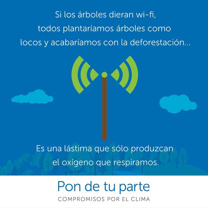 La wi-fi y los árboles