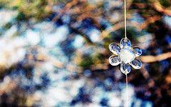 Light   Flickr - Photo Sharing!