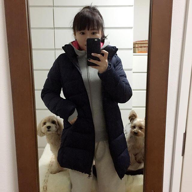 ハッ!  またママが出かけてしまう。。。 #ワークアウト #トレーニング #ジム #フィットネス #workout  #training #gym #fatbarnation #fitness  #犬 #愛犬 #ダイエット  #幸せ  #diet  #いたずら #いぬのきもち #ヨーキー #ヨークシャーテリア #マルプー #yorkshireterrier #maltese #poodle #maltipoo #hybrid #dogfancier #doglover #dogstagram_japan  #setagaya #tokyo #japan