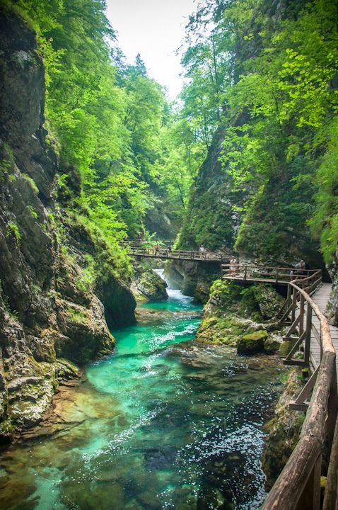 De Vintgar Kloof in Slovenië is ook een natuurlijke parel die je gezien wilt hebben tijdens je roadtrip in Slovenië - Deze pin repinnen we om je te inspireren