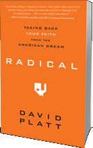 Radical by David Platt. This book challenges you to take a look at your life and to forsake everything for the Gospel.