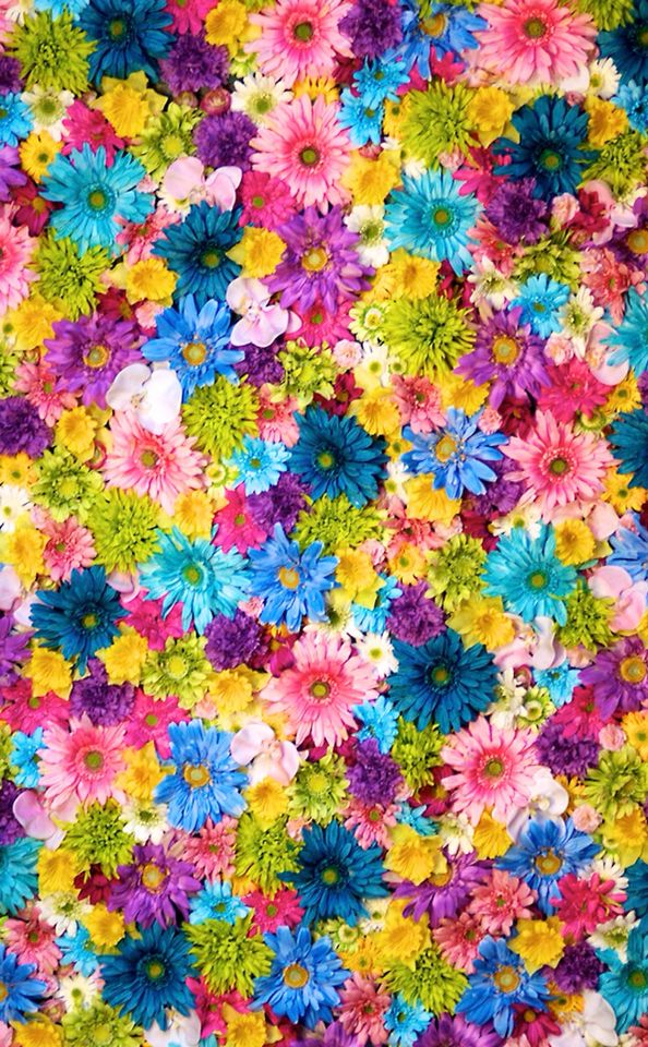 1611 best Girly Wallpapers images on Pinterest