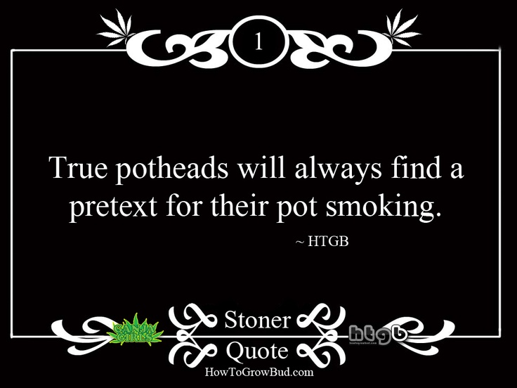 Stoner Quote #1 From HTGB