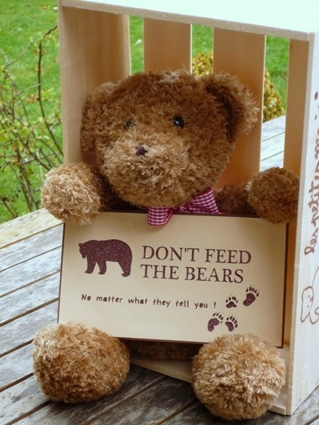 Teddy bear picnic sign #dreamnursery and @cuckoolandcom on each pin