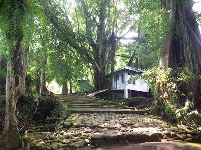 Wisata Mistis Leuweung Sancang | Tempat Wisata di Garut